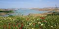 Barrage de Sidi Chahed.jpg