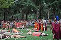 Batalla entre castrexos e romanos (6079217183).jpg