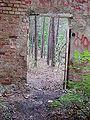 Beelitz Heilstätten -jha- 207219746288.jpeg