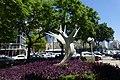 Begin Road, Tel Aviv-Yafo דרך מנחם בגין (4).JPG