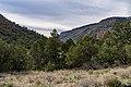 Bell Trail (39038378681).jpg