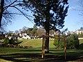Bellfield Park - geograph.org.uk - 1129062.jpg