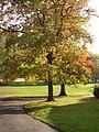 Belmont Park, Exeter - geograph.org.uk - 282475.jpg
