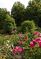 Bergpark Kassel-Wilhelmshöhe 20.jpg