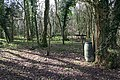 Berrow Wood - geograph.org.uk - 710123.jpg