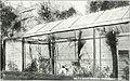 Bird notes (1911) (14562072557).jpg