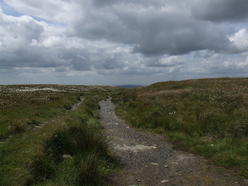 File:Bleaklow6289.JPG