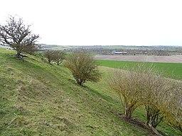 Blewburton Hill 27