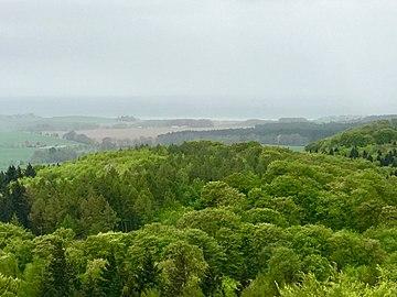 Blick über das Naturschutzgebiet Granitz vom Turm des Jagdschloß Granitz.jpg
