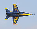 Blue Angels - Joint Service Open House and Airshow.jpg
