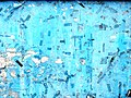 Blues (11275621775).jpg