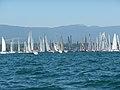 Bol d'Or 2009 - panoramio (11).jpg