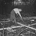 Bosbewerking, arbeiders, boomstammen, gereedschappen, Bestanddeelnr 251-9131.jpg