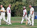 Botany Bay CC v Rosaneri CC at Botany Bay, Enfield, London 35.jpg