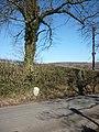 Boundary stone, Dalton Lane - geograph.org.uk - 1737108.jpg