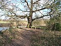 Bournemouth , Stour Valley Local Nature Reserve - geograph.org.uk - 1704325.jpg
