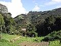 Brasil Rural - panoramio (50).jpg