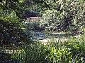 Breloh Teichgebiet (2).JPG