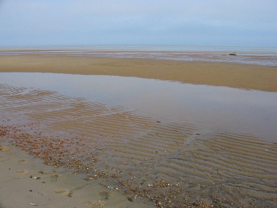 Brewster mudflat