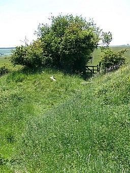 Bridleway, White Sheet Hill - geograph.org.uk - 1334489