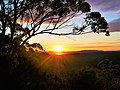 Brisbane Water National Park sunrise.jpg