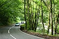 Brompton Regis, the A396 in the Exe Valley - geograph.org.uk - 197345.jpg