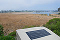 Buena Vista Lagoon.jpg
