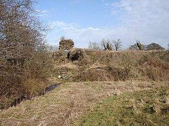 Buittle Castle - Ruins of Buittle Castle
