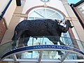 Bull - another view - geograph.org.uk - 1928731.jpg