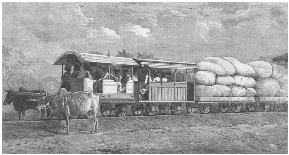 Bullocks hauled train on 2 feet 6 inches wide 3 lbs rail to connect Dabhoi with Miagam