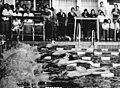 Bundesarchiv Bild 183-R0604-0019, Berlin, 27. Meisterschaften der DDR im Sportschwimmen.jpg