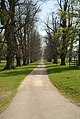 Burghley House Grounds - geograph.org.uk - 661479.jpg