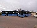 Bus Mdinabus.jpg