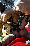 CBRN Marines respond to chemical warfare threat 130614-M-FL266-007.jpg