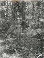 COLLECTIE TROPENMUSEUM Een Kenja man in het oerwoud TMnr 10005603.jpg