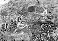COLLECTIE TROPENMUSEUM Verweerde Boeddhabeelden in de ruïne van Kraton Ratu Boko TMnr 10026874.jpg