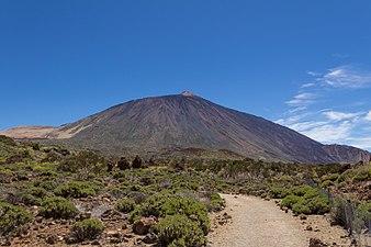 Cañadas del Teide 2.jpg