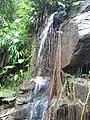 Cachoeira no mato - bicuda grande - Macaé, RJ - panoramio.jpg