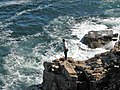 Cadillac Mountain Granite (Devonian; Otter Cliff, Mt. Desert Island, Acadia National Park, southern coastal Maine, USA).jpg