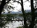 Caisleán an Rois Ross Castle, Páirc Náisiúnta Chill Airne - Ross Castle, Killarney National Park (agost 2011) - panoramio (1).jpg
