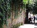 Callejon del Romance - Morelia - Michoacan - Mexico (20497239175).jpg