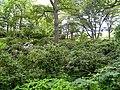 Campus, Wellesley College - DSC09631.JPG