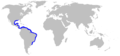 Smalltail shark geographic range