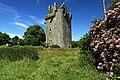 Castles of Munster, Lohort, Cork - geograph.org.uk - 1393402.jpg