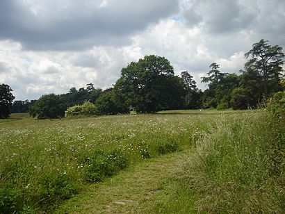 How to get to Catton Park with public transport- About the place