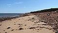 Cavendish Beach, Prince Edward Island (471100) (9447880311).jpg