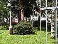 Centro, Franca - São Paulo, Brasil - panoramio (130).jpg