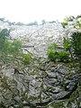 Cetăţile Ponorului - panoramio.jpg