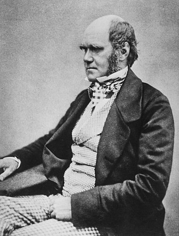 Charles Darwin in 1854, by then working towards publication of On the Origin of Species. Charles Darwin seated crop.jpg