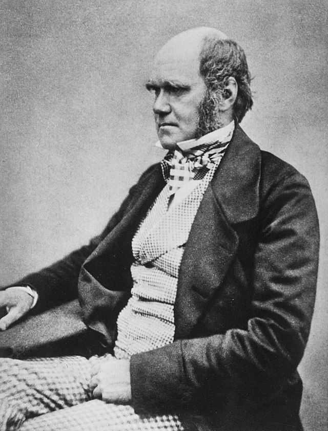 """Charles Darwin seated crop"" by Charles_Darwin_seated.jpg: Henry Maull (1829–1914) and John Fox (1832–1907) (Maull & Fox) [1]derivative work: Beao - Charles_Darwin_seated.jpg. Licensed under Public Domain via Wikimedia Commons - http://commons.wikimedia.org/wiki/File:Charles_Darwin_seated_crop.jpg#mediaviewer/File:Charles_Darwin_seated_crop.jpg"
